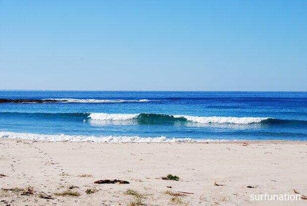 Gannet Beach Roller