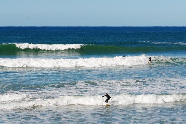 destinations north coast coffs harbour area events australian surf festival