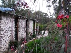 Boranup Cottage
